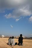 凧を見上げる家族