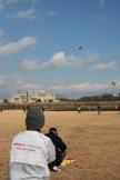 空高くあがるボランティアさん凧