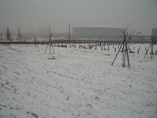 雪のスタジアム