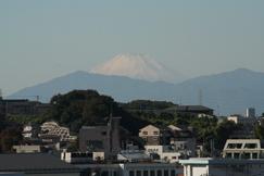 雪化粧の富士山です