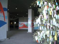 ウォーターパーク前笹竹