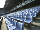Lower Stand